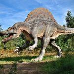 dinosaur-640x480